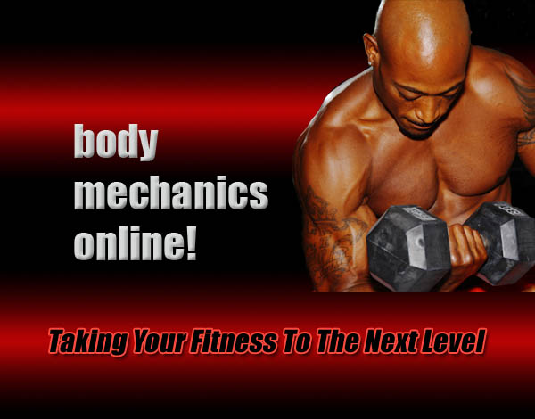 Body Mechanics Fitness logo