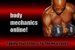Body Mechanics Fitness logo